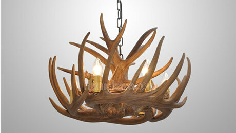 Creative Featured antlers